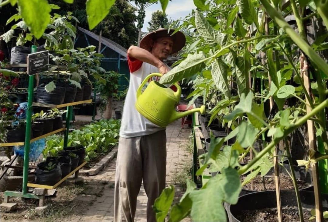 Instalasi Panen Hujan di Kebun Ngremboko